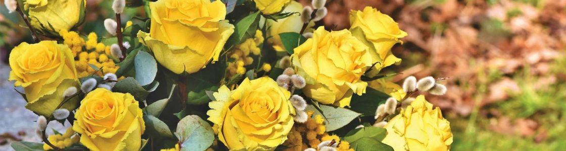 rose-4017870_1920