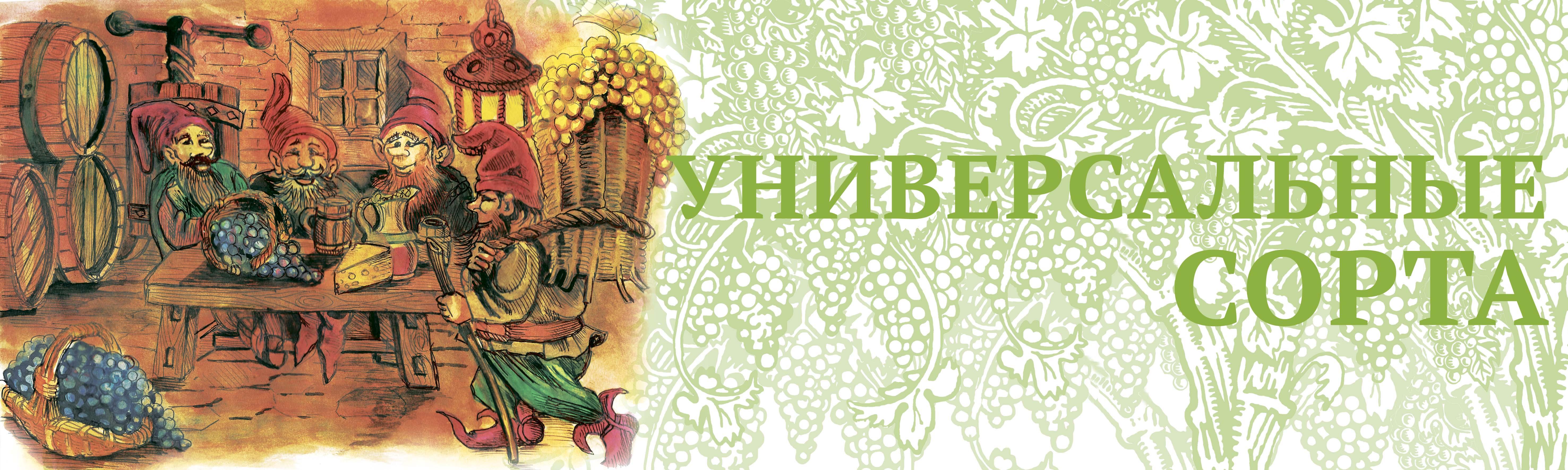 Vinograd_UNIVER